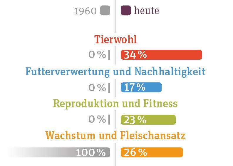 Zuchtziele Puten: 1960: 100 % Wachstum und Reproduktion, heute: 34 % Tierwohl, 17 % Futterverwertung und Nachhaltigkeit, 23 % Reproduktion und Fitness, 26 % Fleischansatz
